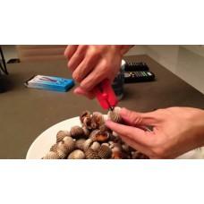 คีมแกะ หอย shell opener wrench
